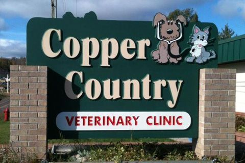 Has Your Pet Had a Preventive Care Exam Lately?